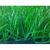 Wholesale Diamond Shape Futsal Artificial Grass , 50mm Bicolor Synthetic Football Turf from china suppliers