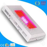 Wholesale 90W LED Grow Lights for Greenhouse from china suppliers