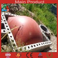 Wholesale Medium Size Anaerobic Digester China Biogas Plant from china suppliers