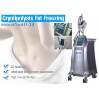 Wholesale Weight Loss Cryolipolysis Body Slimming Machine , Fat Burning Equipment Non - Surgical Liposuction from china suppliers