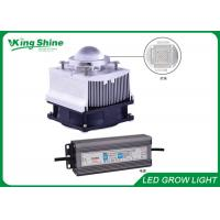 Wholesale High Intensity DIY Led Grow Light Kit 50W Powerful Led Grow Lighting System from china suppliers