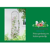 Wholesale Metal Wall Garden Flower Trellis Powder Coated For Climbing Flowers from china suppliers