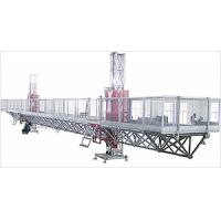 Wholesale Height Adjustable Double Mast Climbing Work Platform 1700 kg Anti-falling from china suppliers