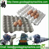 Wholesale Full Atomatic Paper Pulp Egg Tray Machine(FC-ZMG6-48) from china suppliers