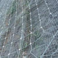 Quality Rockfall Netting with Hexagonal Wire Mesh, Good Security Fence for sale