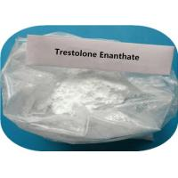 Buy cheap Anabolic Androgenic Testosterone Anabolic Steroid Trestolone Enanthate for Muscle Building from wholesalers