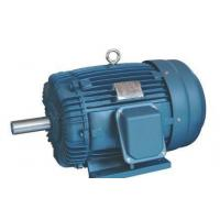 Wholesale High Efficiency Electric 3 Phase Induction Motor 660v AEEF Series from china suppliers