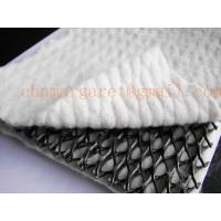 Buy cheap hdpe composite geonet for drainage from wholesalers