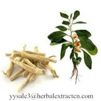 Wholesale Ashwagandha Extract,  Indian ginseng Extract, WITHANOLIDE  3%, 5%,  help insomnia problem, Chinese exporter from china suppliers