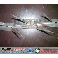 Wholesale Small Razor Wall Spike, Galvanized Wall Spikes, Fence Spike System from china suppliers