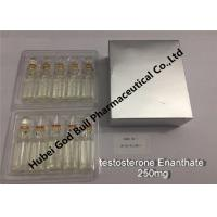 Wholesale testosterone enanthate Injectable Anabolic Steroids injection 250mg/ml 1ml/vial super quality from china suppliers