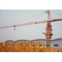 Wholesale TC3006 Construction Tower Crane-Max. Load 2t from china suppliers