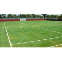 Wholesale Coloring Outdoor Artificial grass lawn for swimming pool, villas from china suppliers