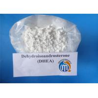 Wholesale Anti - Aging DHEA / Dehydroepiandrosterone CAS 53-43-0 For Muscle Building from china suppliers