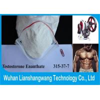 Wholesale Muscle Building Testosterone Enanthate Raw Powder  ,  99% Purity Test e  for Bodybuilding from china suppliers