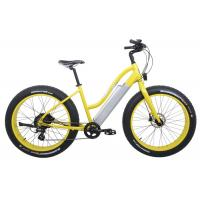Wholesale Lady Style Fastest MTB Electric Bicycle , Folding Electric Bicycle 2 Wheel from china suppliers