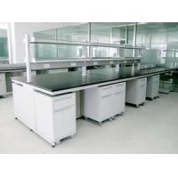 Wholesale Science Lab furniture For Scientists With 12.7mm Thickness solid physiochemical sheet from china suppliers