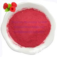 Wholesale Sell Freeze Dried Raspberries Powder from china suppliers