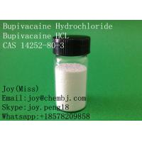 Wholesale USP High Purity Bupivacaine Hydrochloride Bupivacaine HCL CAS 14252-80-3 Local Anesthetic Pain Relief from china suppliers