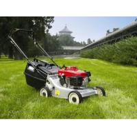 China Grass Trimmer Garden Cutting Machine , 6.5HP 173CC Self Propelled Gas Lawn Mower on sale