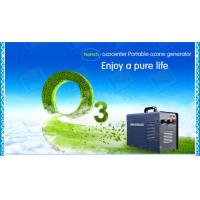 Quality Hotels Portable Ceramic Air Ozone Purifier For Odor Removing for sale