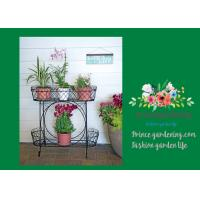 Wholesale Herbs Graceful Metal Plant Stands / Ladder Plant Stand Powder Coated from china suppliers