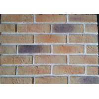 Wholesale Lightweight Artificial Outdoor Faux Brick Panels For Apartment / Hospital / University from china suppliers