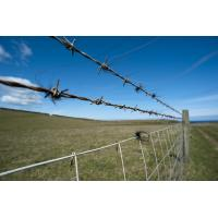 China ISO 9001 2.2 Mm Razor Barbed Wire , Plastic Coated Galvanized Barbed Wire on sale