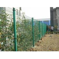 Wholesale CE certificated galvanized and PVC coated Welded Wire Mesh Fence from china suppliers