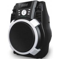 Wholesale Outdoor Portable Battery Powered Active Speaker Systems With SD / FM And USB from china suppliers