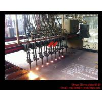 Wholesale Flame CNC Gantry Cutting Machine Single Side Drive For Plate Cutting 5000mm Rail span from china suppliers