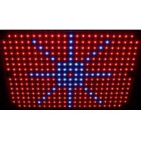 Wholesale 120w Environmentally 7 : 2 / 7: 1 : 1 Ratio Of Red / Blue High Power LED Grow Lights from china suppliers