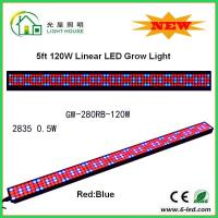 Wholesale IP44 High Brightness Linear Grow Lights For Indoor Plants , PPMA Cover from china suppliers
