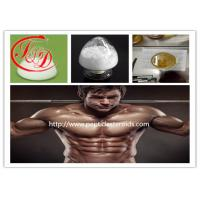Wholesale 99 % Purity CAS 51 - 48 - 9 Raw Steroids Powder L - Thyroxine / T4 for Fat Weight Loss Steroid from china suppliers