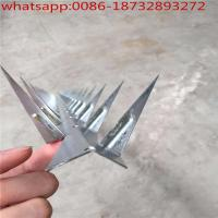 Wholesale barbed nail in the wall from china suppliers
