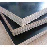 Wholesale plywood phenolic formwork from china suppliers