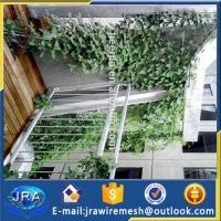 15 years factory X-Tend Stainless steel cable mesh Greenery System