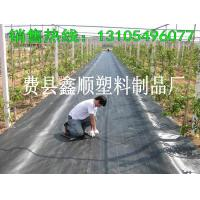 Buy cheap Plastic mulch ground cover from wholesalers