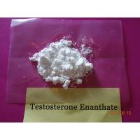 Wholesale Enanthate Testosterone Steroid Test E Powder CAS 315-37-7 White Crystalline Appearance from china suppliers