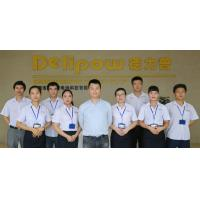 Shenzhen Delipow Battery Co.,ltd