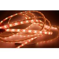 Wholesale 72 Leds / M  FPC Long Led Strip Lights Dimmable 12mm Width from china suppliers