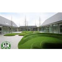 Wholesale Outdoor nylon golf artificial grass recycling Green / white / red from china suppliers