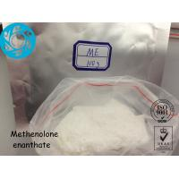 Wholesale Muscle Growth Steroid Hormone Powder Methenolone Enanthate 303 - 42 - 4 from china suppliers