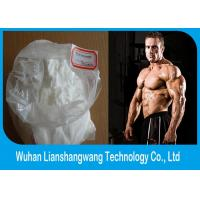 Wholesale CAS 5721-91-5 Testosterone Anabolic Steroid Lean Muscle Gaining Steroids Test Decanoate from china suppliers