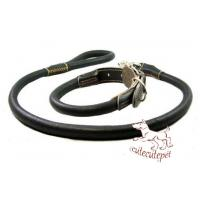 Wholesale leather dog leash for all sizes dogs from china suppliers