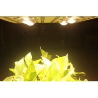 Wholesale 415W LED Grow Lights Full Spectrum Growing From Vegetate To Bloom , Grow Rooms / Tents from china suppliers