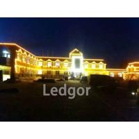 ledgor led neon flex for building lighting
