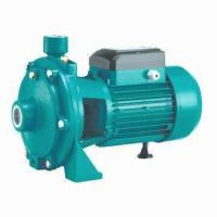 Buy cheap 2TCP double brass impellers pump, copper wire, cold-rolled silicon steel sheet, 1-year warranty from wholesalers