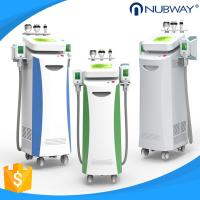 Wholesale 5 handles Vacuum+Cryo, Cavitation and RF multifunctional Cryolipolysis slimming machine from china suppliers