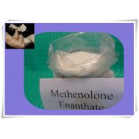 Wholesale CAS NO 303-42-4 Cutting Cycles Steroid Powders Methenolone Enanthate Primobolan from china suppliers